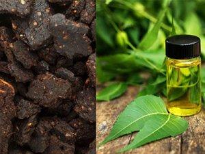 neem-cake-and-neem-oil