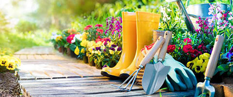 8 Essential Gardening Tools For Beginners