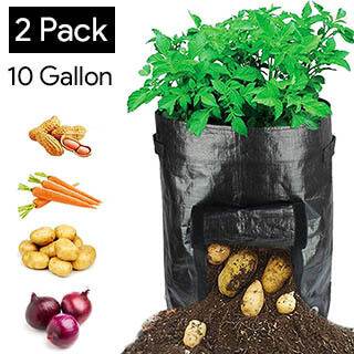 hyrixdirect-grow-bags-for-carrots-black-2-pack