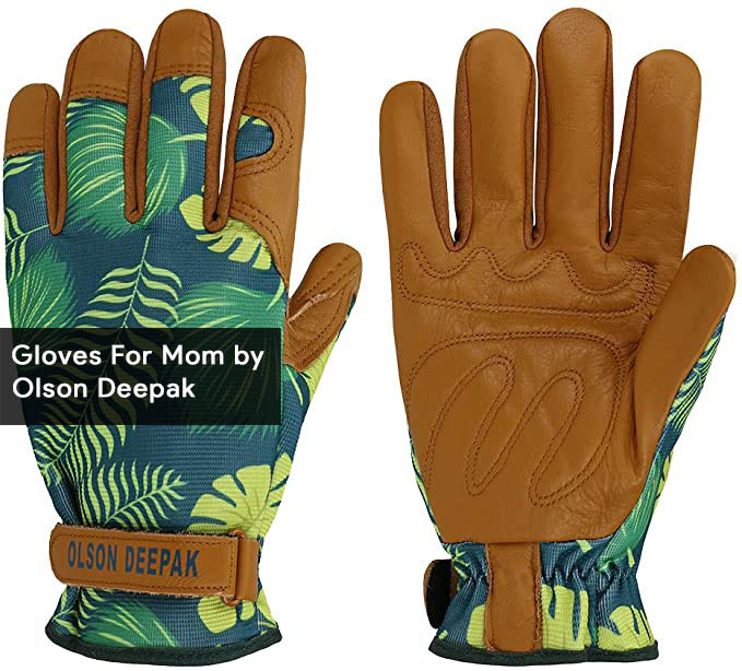 9-Olson Deepak Gloves For Mom