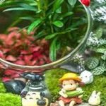 10 Miniature Plants For Terrarium (Open and Closed ) Plus Practical Tips For Maintenance