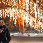 How To Decorate Outdoor For Christmas On A Budget