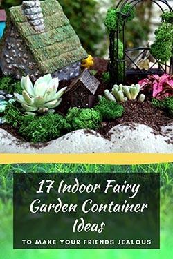 indoor-fairy-garden-container-ideas-article-image