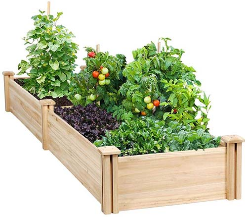 Top Raised Vegetable Garden Kit - Bad Back Shouldn't Ruin Your Home Garden