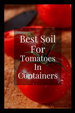 3-best soil for tomato plants-pin-image-small